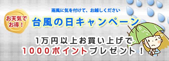 台風キャンペーン